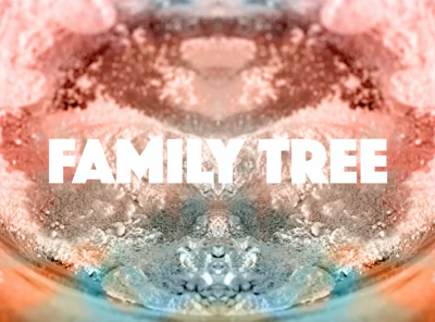Family Tree Event